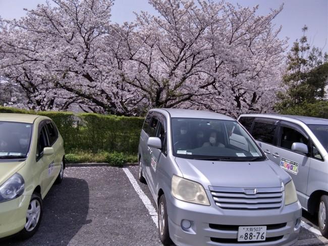 Photo_21-03-30-11-02-54.066