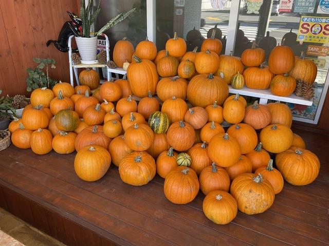 ウィークリー山の手 ~ハロウィンかぼちゃが今年もやってきましたよ~